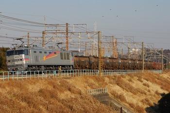 s-DSC_3231.jpg